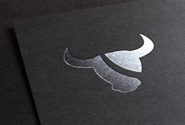 clothing logo design projects